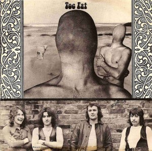 Toe Fat US Picture Sleeve